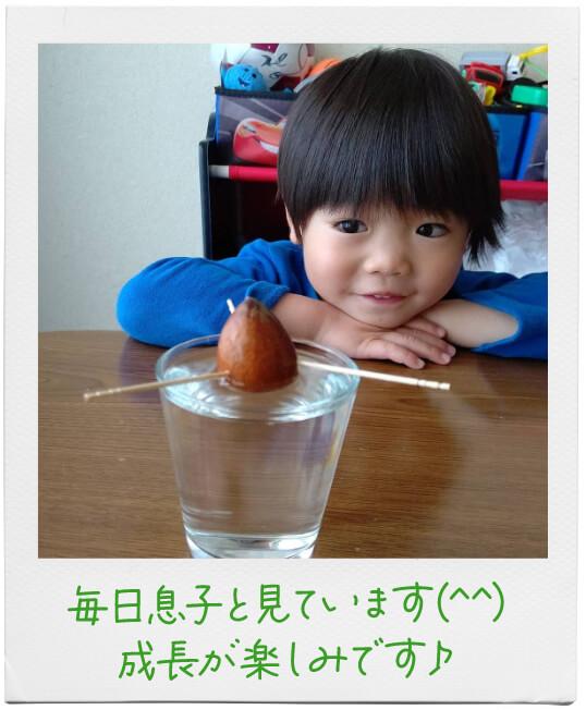 毎日息子と見てます(^^)成長が楽しみです♪